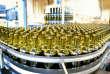 Site Pernod Ricard à Vendeville (Nord), le 31 janvier 2013. Le fonds américain Elliott a pris2,5 % du capital de Pernod Ricard.