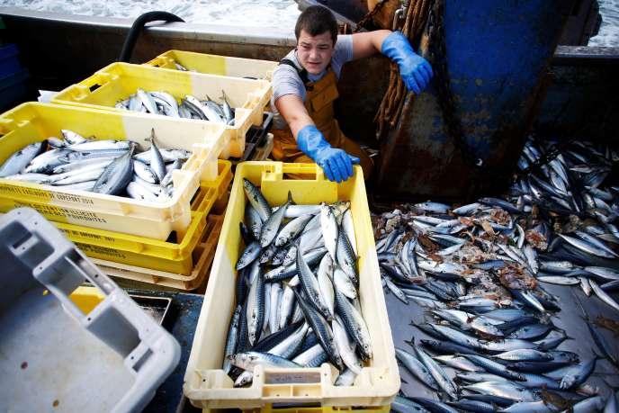 L'association de consommateurs a parcouru les étals de 1 134 hyper et supermarchés, scrutant trois espèces parmi les plus consommées en France et menacées par la surpêche : la sole, le bar et le cabillaud.