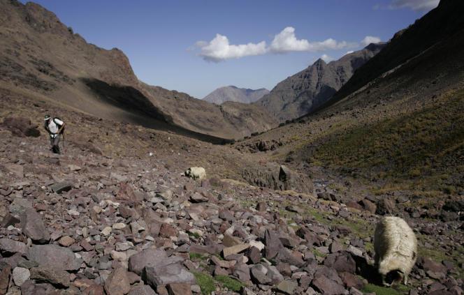 Un randonneur gravit le mont Toubkal, près d'Imlil, au Maroc, en 2009.