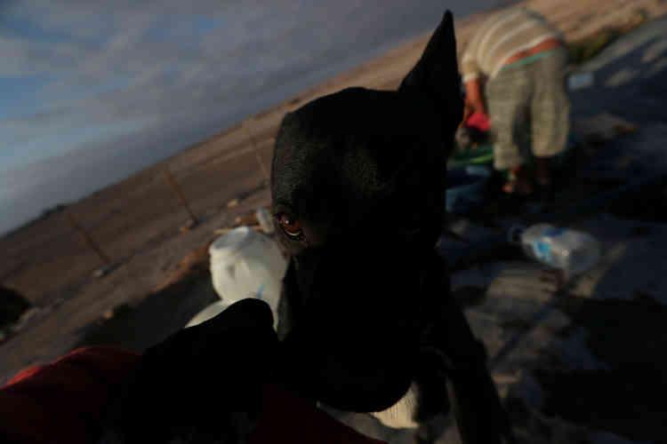 Un migrant bolivien, sans papiers, lave ses vêtements, près d'Arica, le 17novembre.Haïtiens, Dominicains et Boliviens vivent dans des quartiers délabrés, comme le Cerro Chuno d'Arica, où ils gagnent leur vie en travaillant dans les restaurants et les mines. Le racisme et la discrimination au travail sont courants.