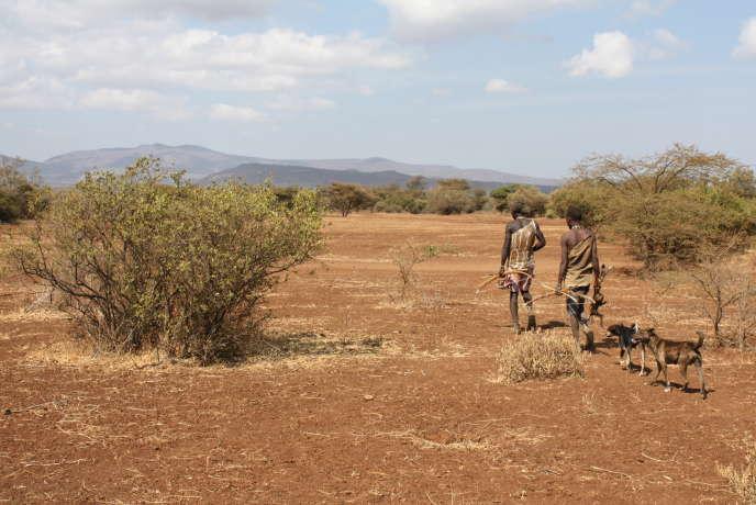 Des archers nomades Hadza près du lac Eyasi (Tanzanie), en août.