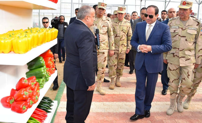 Abdel Fattah Al-Sissi, le 22 décembre 2018 au Caire.