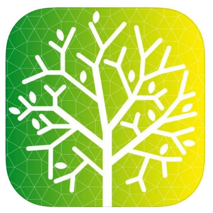«L'appli Stop-tabac.chcompte les jours sans tabac, les euros économisés, les jours de vie gagnés...»