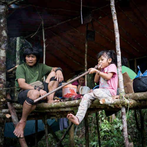 La communauté de Long Tevenga est réunie dans sonlamin toro(éphémère hutte penan). Yonani, la petite fille de Peng Mengut, s'exerce à la sarbacane.