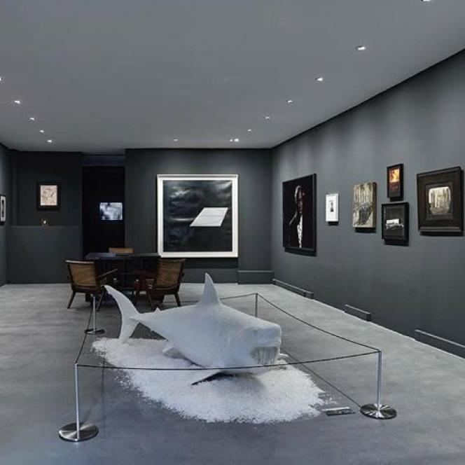 Vue de l'exposition« Cape Fear» à la galerie Prisme (Paris 7e).