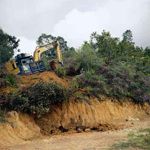 le 1er aout 2018. Près de Bario, sur la route construite par la compagnie forestière de Samling. Elle a choisi le tracé de cette route qui lui ouvre un droit à l'exploitation des arbres aux alentours.