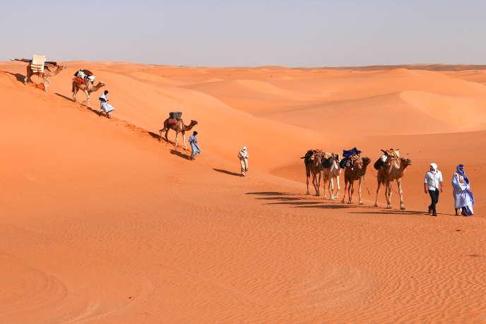 Une méharée dans le désert de l'Adrar, en Mauritanie.