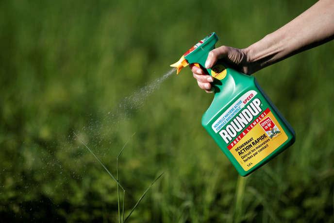 Utilisation de Roundup, près de Paris, en 2018, un herbicide «cancérogène probable» selon certaines études, et pas du tout pour d'autres.