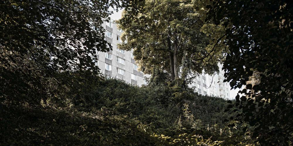 Septembre 2017. Un bâtiment de la cité Gagarine de Romainville, vu depuis la forêt qui s'est implantée naturellement sur l'ancienne carrière de gypse (lequel servait à la fabrication du plâtre de Paris). Ce site a été fermé dans les années 1960 et laissé en friche.