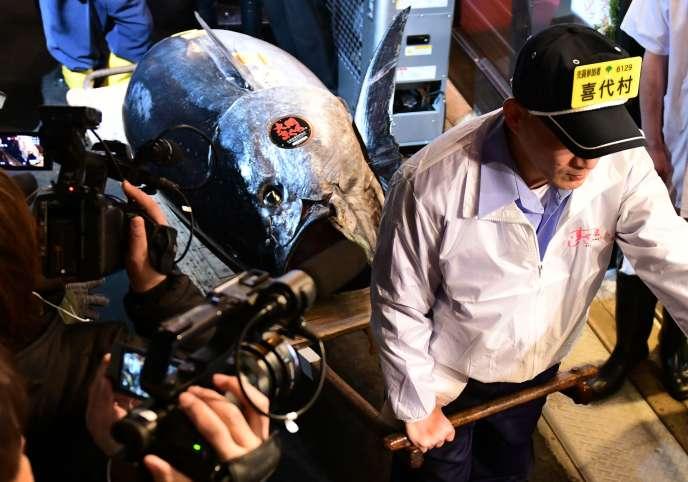 Un thon rouge de 278 kilos s'est vendu à un prix record de 2,7 millions d'euros à Tokyo le 5 janvier.
