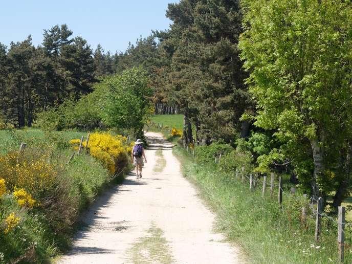 Sur le chemin de Compostelle, entre Le Puy-en-Velay (Haute-Loire) et Nasbinals (Lozère).