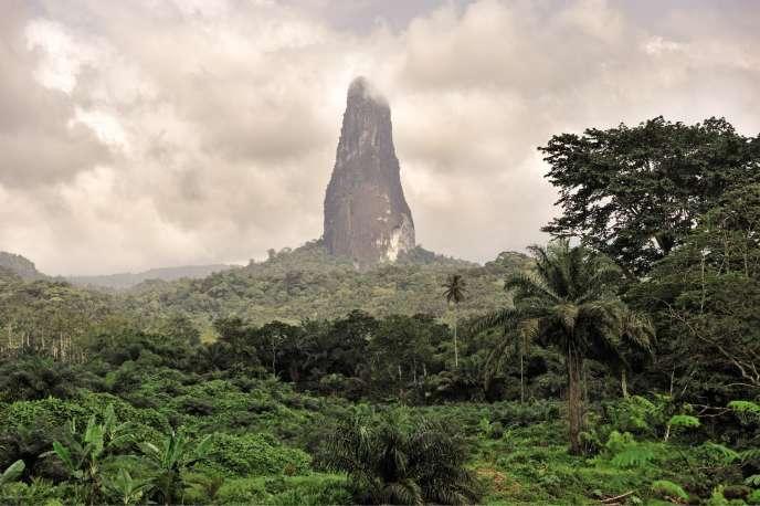 Le parc national d'Obó à São Tomé.
