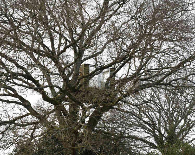 Certains lieux de vie des zadistes se nichent jusque dans les arbres. Comme ici, le 17 janvier, à la Rolandière.