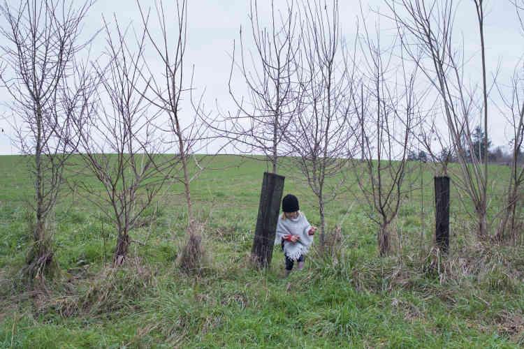 Une haie « champêtre nourricière », constituée de 200 arbres – des essences de la région – délimite la parcelle, la protégeant notamment des pesticides de l'agriculteur voisin.