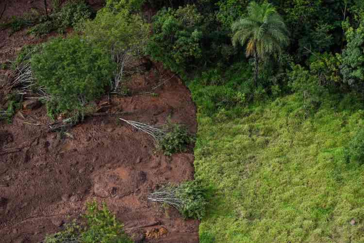 Le président directeur général du groupe Vale, propriétaire de la mine,a dit redouter un bilan humain lourd, mais a en revanche estimé que les conséquences environnementales devraient être moindres que lors de la catastrophe de Bento Rodrigues en 2015, dans le même Etat.