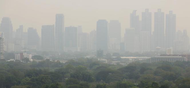 Un épais brouillard s'étend au-dessus du parc Lumphini, dans le centre de Bangkok, la capitale thaïlandaise, jeudi31janvier 2019.