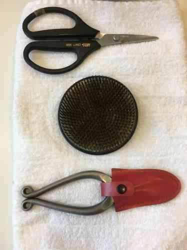 Ciseaux,« kenzan» (pique-fleurs) et sécateur, posés sur une serviette destinée à... amortir les bruits.