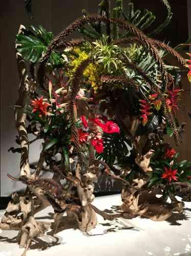 Cet agencement spectaculaire comprend des branches, fraîches et desséchées, d'araucaria du Chili (le« désespoir des singes »). Celles-ci ont été spécialement fournies par l'arboretum de Chèvreloup, près de Versailles, qui dépend du Muséum national d'histoire naturelle.