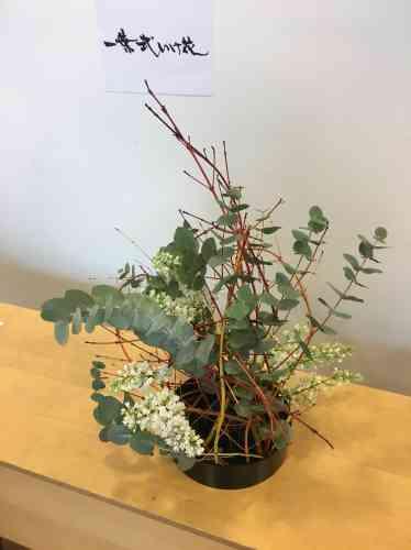 La technique employée ici a consisté à n'utiliser que les plantes elles-mêmes comme support (ici des branches colorées de cornouiller).