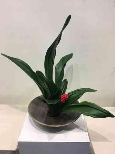 La plante utilisée est un «Omoto rohdea japonica», livré spécialement du Japon.