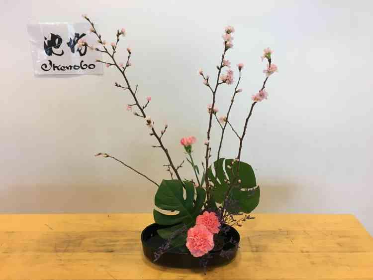 Branches de cerisier, feuilles de monstera et œillets roses évoquent avec grâce la venue prochaine... du printemps.