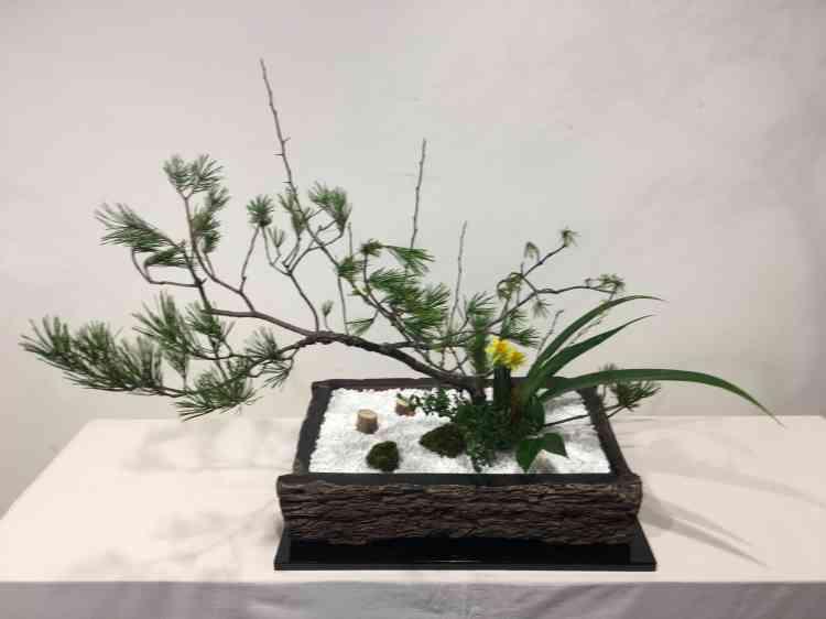 Branche de pin, fleurs et végétaux, plantés dans un support de bois brûlé, évoquent un paysage de bord de rivière.