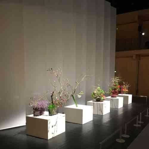 Les arrangements floraux des cinq« iemoto» (grands maîtres) ont été présentés côte à côte dans la grande salle modulable de la Maison de la culture du Japon.