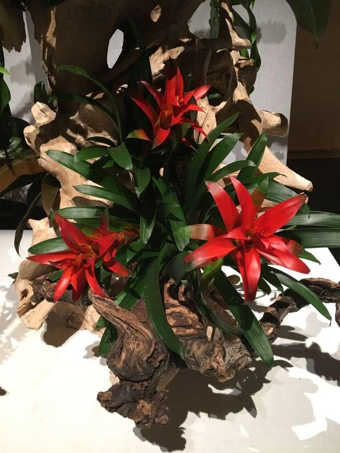 Détail d'une composition végétale d'Hiroki Ohara, grand maître de l'école Ohara.