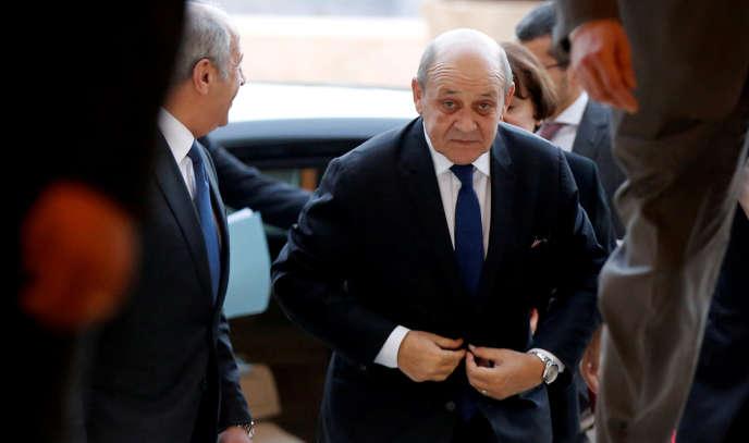Le ministre des affaires étrangères, Jean-Yves le Drian, à Aman, en Jordanie, le 13 janvier.