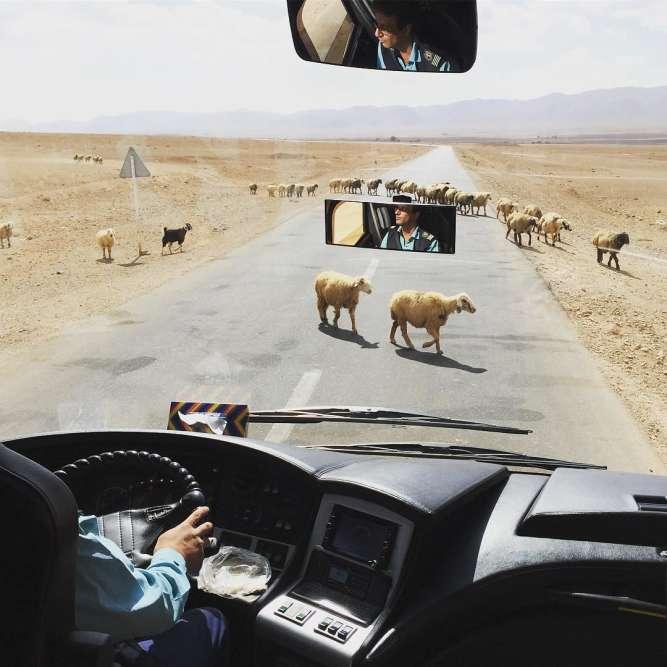 Sur la route d'un chauffeur de bus.