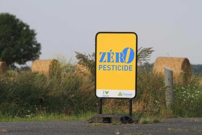 «L'avis de l'EFSA, rendu en2012, est sans ambiguïté, et montre que les méthodes actuellement utilisées pour évaluer la toxicité des pesticides pour les abeilles sont très insuffisantes »