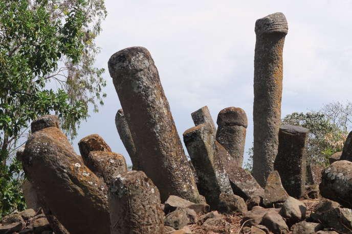 Plus d'une dizaine de milliers de stèles aux formes «phalliques» parsèment les contreforts de la vallée du Rift, au sud de l'Ethiopie. Ces phallus de pierres peuvent s'élever jusqu'à huit mètres de hauteur et peser plusieurs tonnes.
