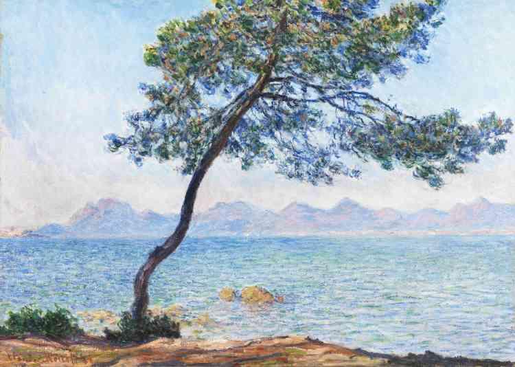 « Claude Monet rend compte ici des effets du soleil: il résout ce défi en usant de tons plus vifs et en contrastant les couleurs, opposant aux bleus et aux verts des teintes roses et orangées. Sur le principe de la série, il dédia au moins sept toiles au motif des pins en bord de mer.»