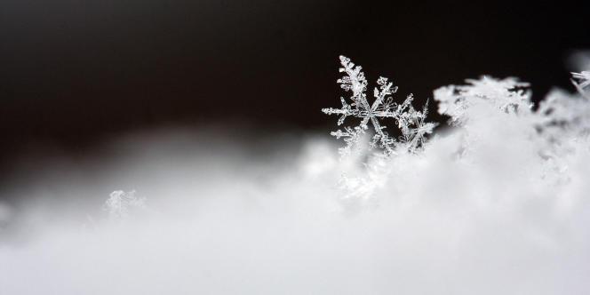 Flocon de neige.