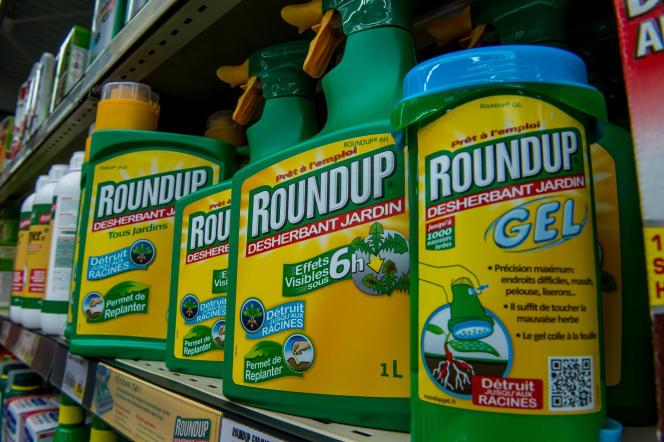 Le 15 juin 2015, une bouteille du pesticide Roundup de Monsanto dans un magasin de jardinage, à Lille.