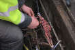 Intervention d'une équipe de maintenance d'Orange sur le réseau câblé Internet, àAmiens, le 11 février.