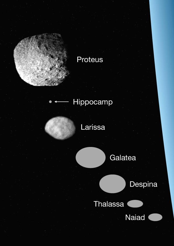 Comparaison des diamètres des sept plus proches satellites de Neptune.