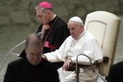 Le pape François, au Vatican, le 20 février.