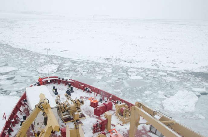 Le brise-glace canadien «Amundsen» sillonne le fleuve Saint-Laurent pour étudier la biologie de ses eaux en hiver.