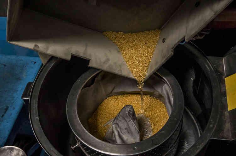 Après une cuisson à une température allant jusqu'à 1500 degrés Celsius etsous l'action de la pression de l'eau et celle du mouvement, l'or se transforme en granules.