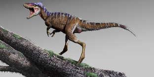 Reconstitution du «Moros intrepidus», un « mini-tyrannosaure » dont les fossiles ont été découverts dans l'Utah, aux Etats-Unis.