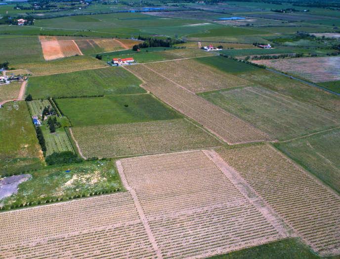« L'agriculture industrielle est une des principales responsables de la perte de biodiversité, de l'érosion des sols (27millions d'hectares concernés en France, soit 18% du territoire)» (photo: département de l'Aude).