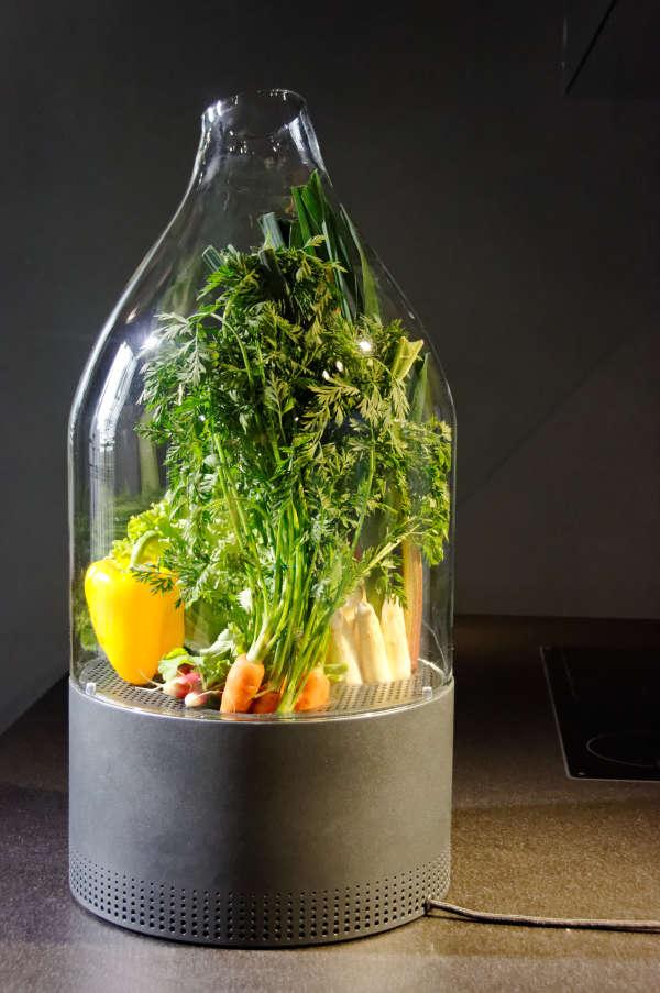 Cloche tempérée, entre nature morte et garde-manger réfrigéré et ventilé, pour conserver les légumes (Boffi cuisine, 2012).
