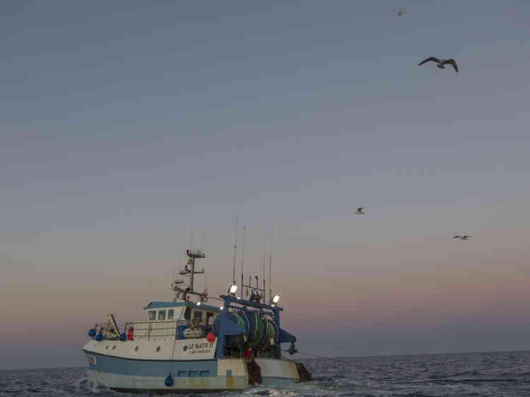 Au dessus de ce bateau de pêche, un drone piloté depuis le «Sam Simon». Il filme le pont du bateau pour établir la présence du dauphin.