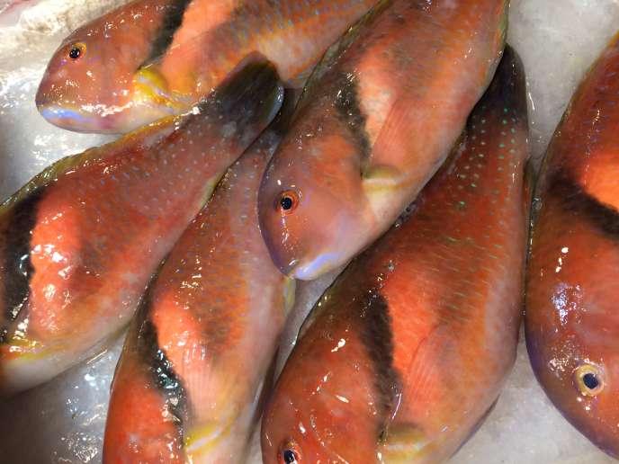 Crevettes, poissons, coquillages… beaucoup d'échoppes vendent des produits de la mer.