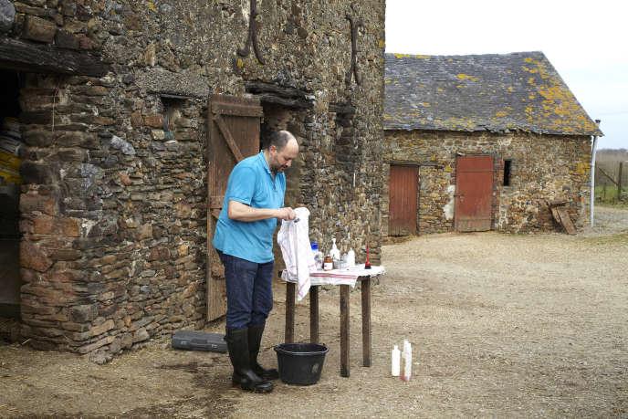 Mehdi Hakimi, qui travaille en Mayenne depuis 2006, nettoie ses outils après une césarienne sur une vache.