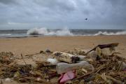 Déchets en plastique, parmi d'autres débris rejetés par la mer, au nord de Colombo, sur une plage du Sri Lanka.