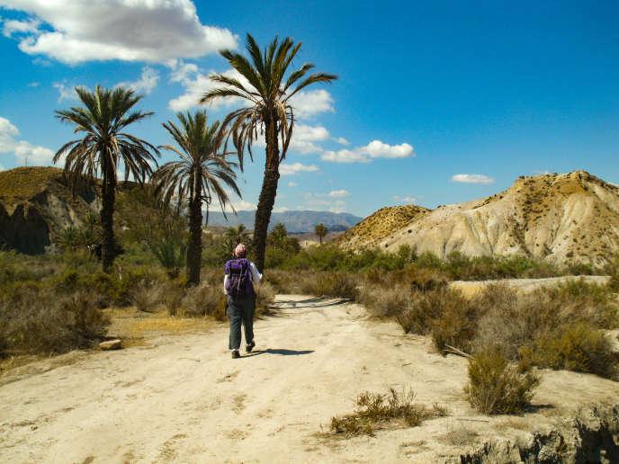Le désert de Tabernas, en Andalousie (Espagne).