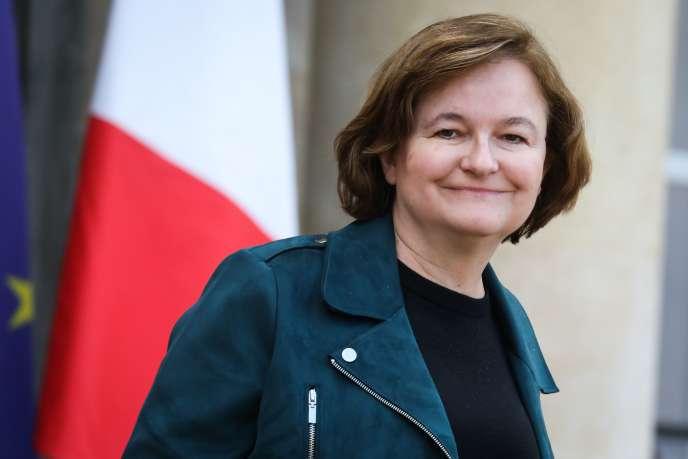 La ministre des affaires européennes, Nathalie Loiseau, à la sortie du conseil des ministres à l'Elysée, le 30 janvier à Paris.