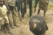 Une enquête du « Monde » montre que les génocidaires Hutu avaient planifié leurs crimes plusieurs années à l'avance.